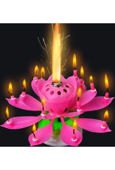 Pandoli Pembe Işıklı Sesli Doğum Günü Pasta Mumu