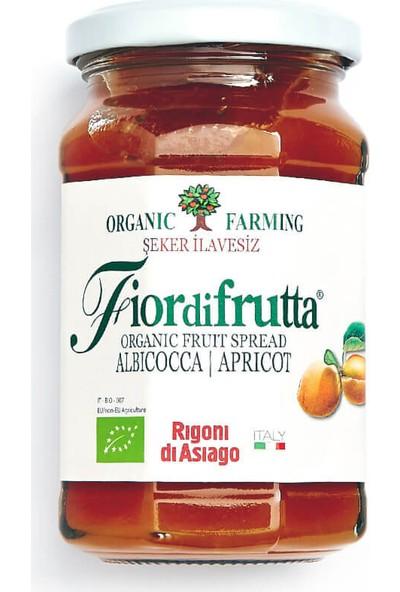 Fior Di Frutta Organik Kayısı Püresi 250 Gr.