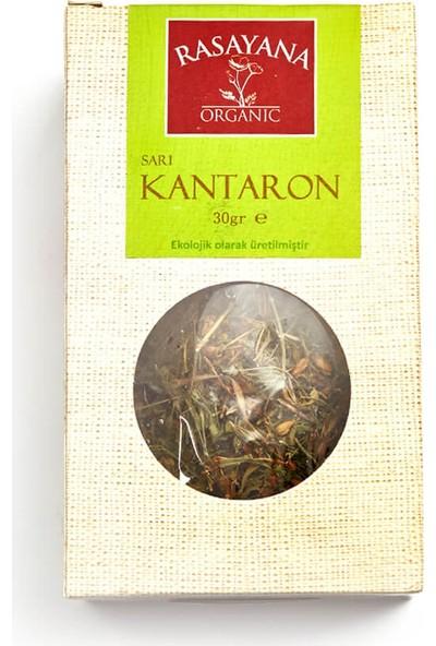 Rasayana Organik Sarı Kantaron Çayı 30 Gr.