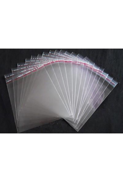 Plasspak Bantlı Jelatin 28X42X5 Cm (5 Kg)