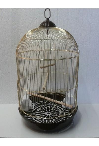 Dayang Silindir prinç Papağan Kafesi 40x60