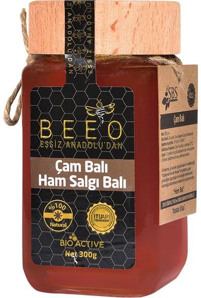 BEE'O Çam Balı 300 gr