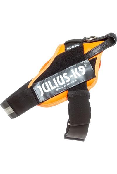 Julius-K9 Özel Eğitimli Çalışan Köpek Tasması 1