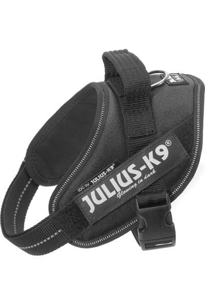 Julius-K9 Idc-Göğüs Tasması Siyah | 7-15Kg Ve 49-67Cm Göğüs Çevresi