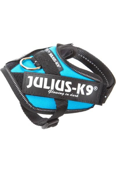 Julius-K9 Idc-Göğüs Tasması Turkuaz | 2-5Kg Ve 33-45Cm Göğüs Çevresi