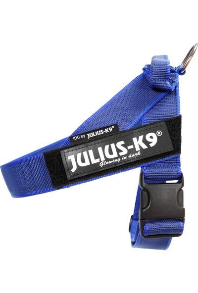 Julius-K9 Color & Gray Idc Kemerli Göğüs Tasması 0