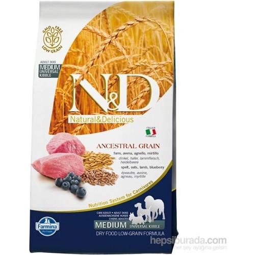 N&D Natural Delicious Düşük Tahıllı Kuzu Etli Yaban Mersinli Köpek Maması 2.5 Kg