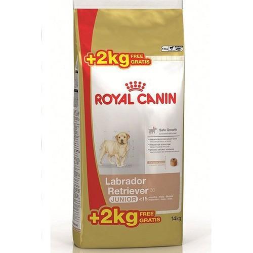 Royal Canin Labrador Retriever Junior Yavru Köpek Maması 12 Kg + 2 Kg