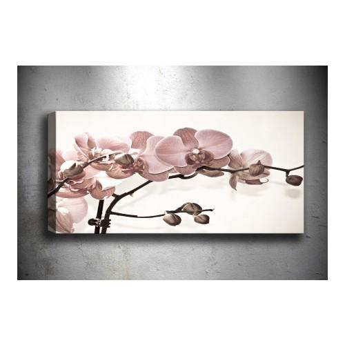 Tablo Center Çiçek Kanvas Tablo Y40002