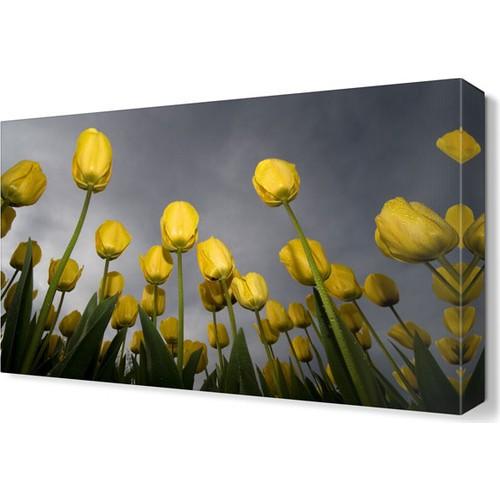 Dekor Sevgisi Sarı Laleler Tablosu 45x30 cm