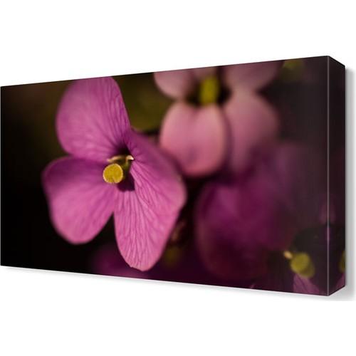 Dekor Sevgisi Pembe Çiçek2 Tablosu 45x30 cm