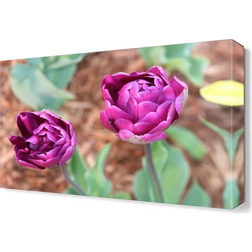 Dekor Sevgisi İki Güzel Çiçek Tablosu 45x30 cm