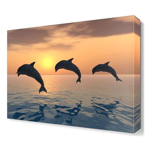 Dekor Sevgisi Üç Yunus Tablosu 45x30 cm