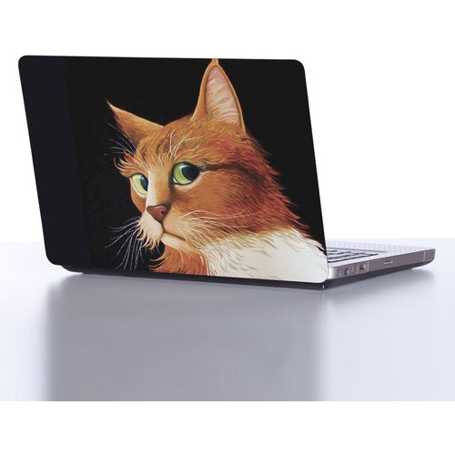 Decor Desing Laptop Sticker Dlp236