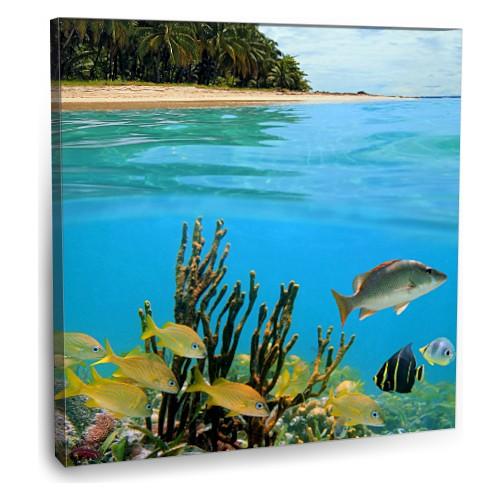 Fotografyabaskı Caribbean Denizi Tablo Panama 70 Cm X 70 Cm Kanvas Tablo Baskı