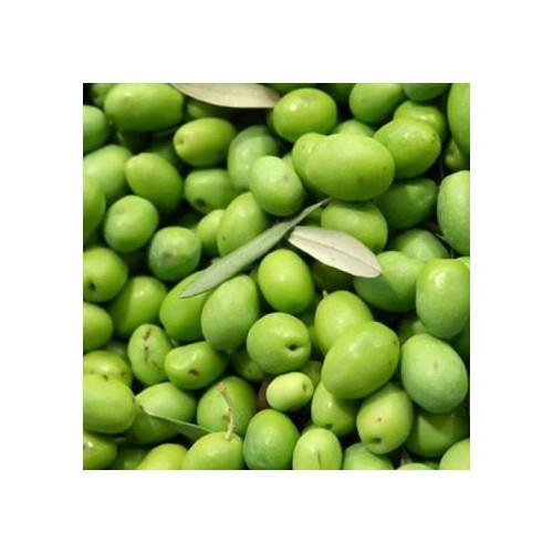 Antakya Uzun Çarşı Selçuk Yardım Halhalı Yeşil Zeytin 1Kg