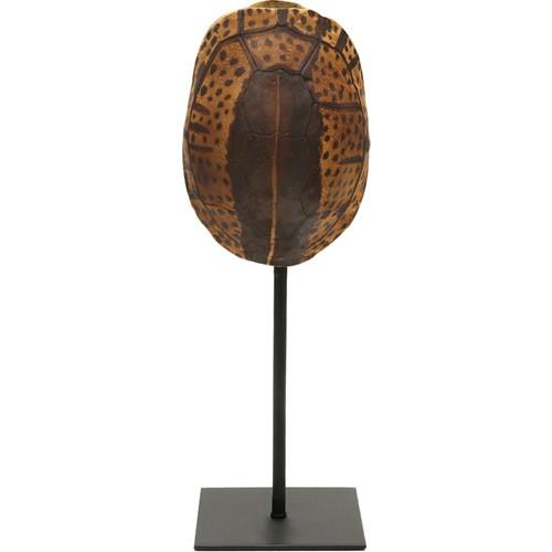 Yargıcı Dekoratif Kaplumbağa Kabuğu ( 12 X 11 X 32 Cm )