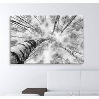 Orman ve Ağaçlar Dekoratif Kanvas Tablo