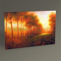 Tablo 360 Brown Silhouette Tablo 45X30