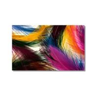 Tictac Renkli Tüyler Kanvas Tablo - 40X60 Cm