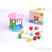 Learning Toys Intelligence Shape Wheel