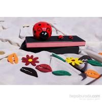 Mira Uğur Böceği Kumbara Tasarım Kutu 22*8 Cm