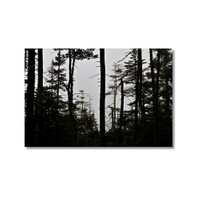 Tictac Ağaçlar Kanvas Tablo - 40X60 Cm