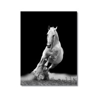 Tictac Koşan Beyaz At Kanvas Tablo - 60X90 Cm