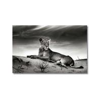 Tictac Dişi Aslan Kanvas Tablo - 40X60 Cm