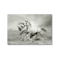 Tictac Koşan Beyaz Atlar Kanvas Tablo - 50X75 Cm