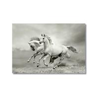 Tictac Koşan Beyaz Atlar Kanvas Tablo - 40X60 Cm