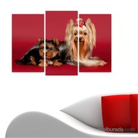 Dekoriza Sevimli Köpekler 3 Parçalı Kanvas Tablo 80X50cm