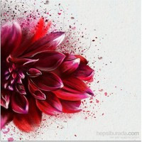 Kırmızı Çiçek Kanvas Tablo
