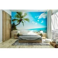 Iwall Resimli Palmiye Ve Kumsal Duvar Kağıdı 370X250