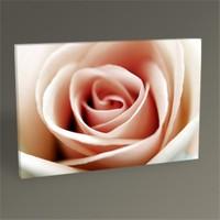 Tablo 360 Pink Rose Tablo 45X30