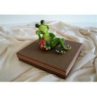 Mira Sevimli Yeşil Kurbağa Tasarım Kutu 20*20 Cm