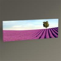 Tablo 360 Lavender Field Tablo 60X20