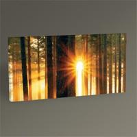 Tablo 360 Forest Sunbeams Iı Tablo 60X30