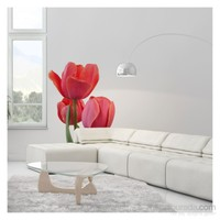 Artikel Tulip Dev Duvar Sticker Dp-1453