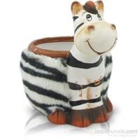 Seramik Zebra Saksı