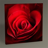 Tablo 360 Red Rose Tablo 30X30