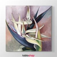 Tabloshop Georgia Okeeffe - White Bird Of Paradise Tablosu