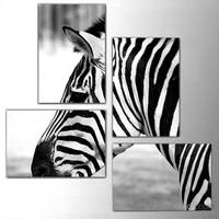 Zebra - 4 Parçalı Kanvas Tablo