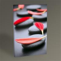Tablo 360 Siyah Taş Ve Kırmızı Yapraklar Iı 45X30