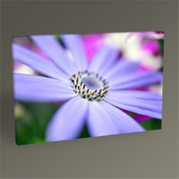 Tablo 360 Mor Çiçek Tablo 45X30