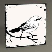 Tablo 360 Kuş Iı Tablo 30X30