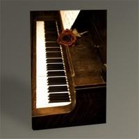 Tablo 360 Piano Iı Tablo 45X30