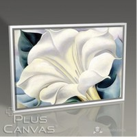 Pluscanvas - Georgia Okeeffe - White Trumpet Flower Tablo