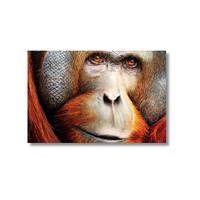Tictac Maymun Kanvas Tablo - 40X60 Cm
