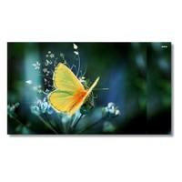 Tictac Sarı Kelebek Kanvas Tablo - 50X100 Cm